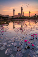 Sunrise scene of majestic Jelutong Mosque or Masjid Tengku Ampuan Jemaah with reflection at Kuala Lumpur Malaysia (MongkolChuewong) Tags: ampuan architecture asia beautiful beauty blue bright building bukit color dawn dome east exterior faith famous flower islam islamic jelutong jemaah kuala lake landmark landscape light lotus lumpur malaysia masjid minaret mosque muslim natural nature night orange people religion religious sky space sunrise symbol tengku travel view water worship yellow shahalam selangor