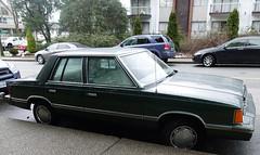 1982 Dodge Aries Custom  4-door sedan (D70) Tags: 1982 dodge aries custom 4door sedan gardenvillage burnaby britishcolumbiacanada