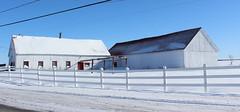 An old barn (pegase1972) Tags: quebec québec qc canada barn grange étable fence cloture monteregie montérégie hiver neige winter snow