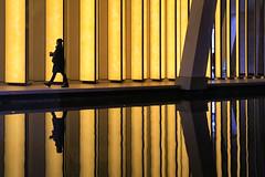 Fondation Louis-Vuitton (erichudson78) Tags: jaune yellow france iledefrance paris16ème fondationlouisvuitton reflection reflets silhouette canonef24105mmf4lisusm canoneos6d musée museum architecture modernarchitecture lumières lights bassin pool water eau candid