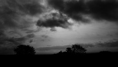 Dark cloudy skies and a stormy day (M.T.A.V) Tags: clouds cloud storm overcast sky dark blackandwhite blackwhite bw monochrome moody mood atmosphere atmospheric tree trees white light lowlight view canon canoneos750d canon750d efs1855mm westsussex south sussex sun