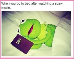 When you go to bed after watching a scary movie (gagbee18) Tags: aww funny funnymemes horrormovies movies scary scarymovies