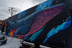 Humpback mural (RCB4J) Tags: chicago rcb4j ronniebarron sonyfe2470mmf4zaoss sonyilce7m2 sonyalpha usa art brewery humpbackwhale mural photography pilotproject sony street streetart dxo dxopl3