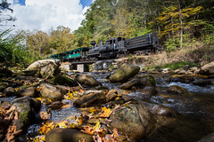 Fall in Cass (Peyton Gupton) Tags: cass scenic railroad shay leatherbark creek wv west virginia steam