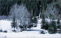 Oly_P1170675 (calpha19) Tags: imagesvoyagesphotography adobephotoshoplightroom olympusomdem1mkii em1mkll olympusfrance zuiko m12100f4 voyage valléedustubaïtal stubaital neustiftimstubaital österreich autriche janvier 2020 ngc geo flickrsexplore explore neige volderau falbeson