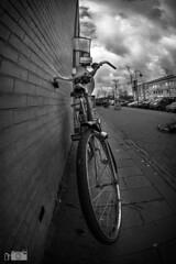 Big wheels have seen beter day's... (happad fotografie) Tags: sky dramatic white black bw monochrome blackandwhite perspective wheel fiets bike bicycle d610 nikon fisheye 16mm nikkor