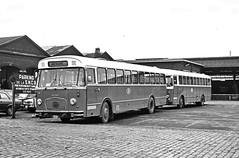 STACA 44 GENAPPE (brossel 8260) Tags: belgique bus prives sncb brabant staca