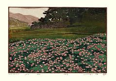 Sacred lotus (Japanese Flower and Bird Art) Tags: flower sacred lotus nelumbo nucifera nelumbonaceae tsutomu obata modern woodblock print japan japanese art readercollection