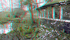 Chinese Tuin Blijdorp Zoo Rotterdam 3D (wim hoppenbrouwers) Tags: chinesetuin blijdorpzoo rotterdam3d chinese tuin blijdorp zoo rotterdam 3d anaglyph stereo redcyan