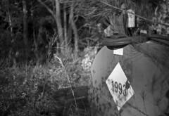 In the Woods (PositiveAboutNegatives) Tags: leica rangefinder m2 leicam2 35mm cosina voightlander cv voightlander35mmf2ultronaspherical film analog bw blackandwhitefilm foma fomapan fomapan100 hc110 vuescan afternoonlight lastlight