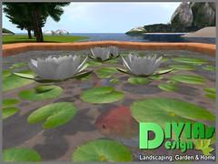 Star Shaped Cuddle Pond 05 (Dina LaVega) Tags: bento couple pond fountain