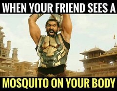 When friend sees mosquito on your body (gagbee18) Tags: aww friends funny memes mosquito