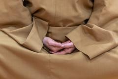 ALA_2443 (dmcom.dcd) Tags: 20200213templobudista religião monge meditação
