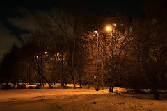Moscow. Night in Izmailovo (dardashew) Tags: moscow izmailovo winter night february lights snow trees street izmailovskyboulevard nightscape dardashew dmitryardashev houses