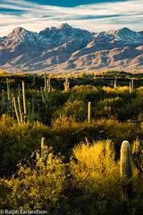 Desert Sunset (Ralph Earlandson) Tags: sunset cactus arizona saguaro desert sonorandesert saguaronationalparkeast clouds mountain tucson