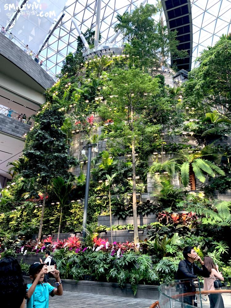 新加坡∥新加坡機場星耀樟宜(Jewel Changi Airport)最美的機場景點、最高室內美麗瀑布 31 49536162368 a3ed936383 o