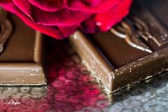 Sweetness Bleeding Over (gvbtom) Tags: sweetsformysweet smileonsaturday rose chocolate valentinesday candy macro red