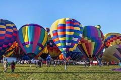 Phenix and group (ABQ) (edit) (MO FunGuy) Tags: 2019albuquerqueinternationalballoonfiesta newmexico hot air balloon