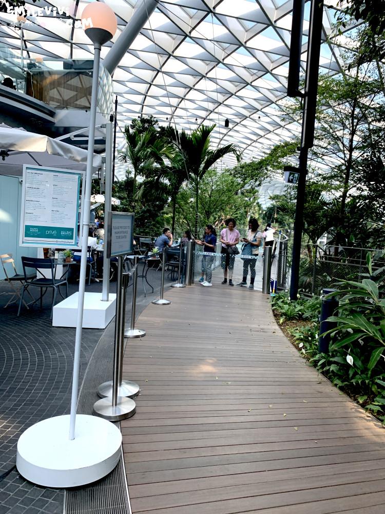 新加坡∥新加坡機場星耀樟宜(Jewel Changi Airport)最美的機場景點、最高室內美麗瀑布 44 49536658846 18dbbde624 o