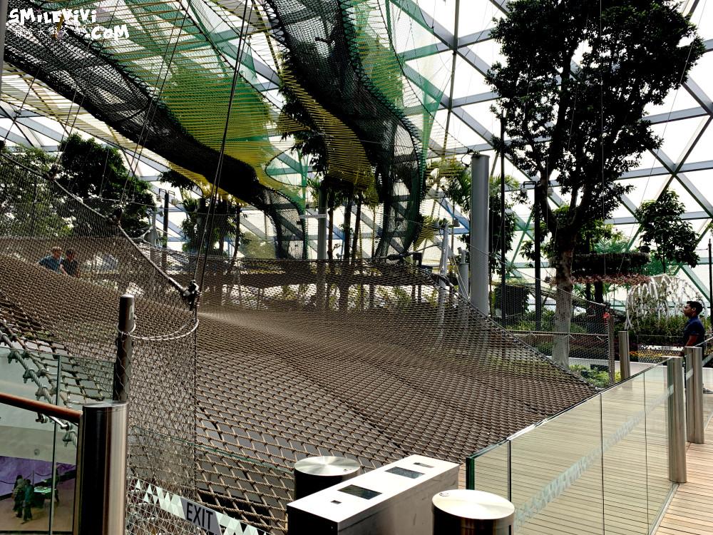 新加坡∥新加坡機場星耀樟宜(Jewel Changi Airport)最美的機場景點、最高室內美麗瀑布 45 49536658941 54d0379309 o