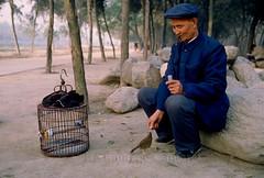 Près des remparts de Xi'An (Bertrand de Camaret) Tags: chine china xian bertranddecamaret homme man oiseau bird cage nourriture 1986 ngc nationalgeographic argentique kodachrome 64 couleur color