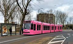 Pink Reprise (Peter ( phonepics only) Eijkman) Tags: amsterdam city combino colorbino gvb tram trams transport tramtracks trolley rails rail strassenbahn streetcars netherlands nederland nederlandse noordholland holland