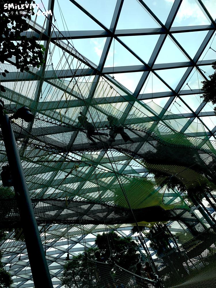新加坡∥新加坡機場星耀樟宜(Jewel Changi Airport)最美的機場景點、最高室內美麗瀑布 46 49536887812 b1031514f9 o