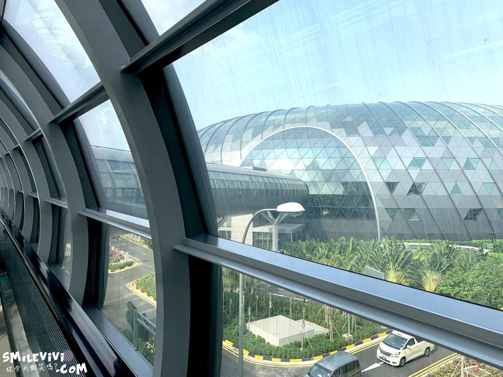 新加坡∥新加坡機場星耀樟宜(Jewel Changi Airport)最美的機場景點、最高室內美麗瀑布 10 49536888412 09bf8e386a o