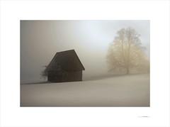 Luz de invierno (E. Pardo) Tags: luz light licht invierno winter nieve nebel snow formas formen forms niebla fog schnee paisaje landscape landschaft steiermark austria