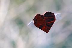 Origami Valentine/Heart and Arrow  (Neal Elias) (De Rode Olifant) Tags: origamivalentine origami origamiheartandarrow nealelias marjansmeijsters paper paperart papiroflexia diagrams valentine valentinesday heart origamiheart heartandarrow qqm16 qqm16cuoridicarta theorigamiworldofnealelias davevenables marccooman