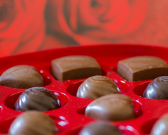 Sweet Treats (Bud in Wells, Maine) Tags: sweetsformysweet valentinesday candy red roses smileonsaturday