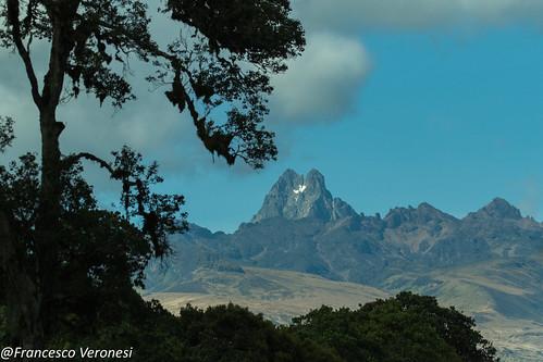 Mt.Kenya - Kenya CD5A0309
