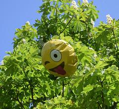 Totally random (MJ Harbey) Tags: tree sky balloon emoji miltonkeynes buckinghamshire nikon d3300 nikond3300