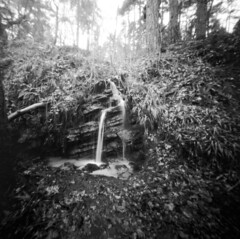 Woodland water feature (Richie Rue) Tags: woodland woods water waterfeature cascade landscape pinhole lensless realitysosubtle mediumformat 6x6 square 120 foma fomafomapan200 rodinal 150 outdoors blackandwhite monochrome bnw bw film analogue