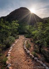 Jey Way Sunstar (Panorama Paul) Tags: paulbruinsphotography wwwpaulbruinscoza southafrica westerncape littlekaroo karooacacia sunset path mountains sunstar sollasollew nikond850 nikkorlenses nikfilters