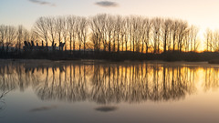 _DSC7594 (canalesjacinto58) Tags: paisaje reflejos buesaarena morning vitoria sonya7iii