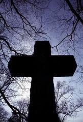 "Cincinnati - Spring Grove Cemetery & Arboretum ""Cross Inside Branches"" (David Paul Ohmer) Tags: cincinnati ohio spring grove cemetery arboretum cross silhoutted silhouetted"