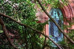 """Cincinnati - Spring Grove Cemetery & Arboretum """"Strader Mausoleum Door Through The Trees"""" (David Paul Ohmer) Tags: cincinnati ohio spring grove cemetery arboretum strader mausoleum door"""