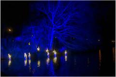 Wonderlicht Alkmaar.