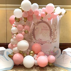 Balloon Suppliers Sterling Heights Michigan   Party Paradise (partyparadise2015) Tags: balloon supplier sterling heights michigan