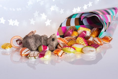 Sugar Overdose (FocusPocus Photography) Tags: sweets sweetsformysweet smileonsaturday maus mouse bonbons candies