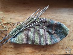Mrs Tiggywinkle- 6 (Jane Starz) Tags: knitting socks