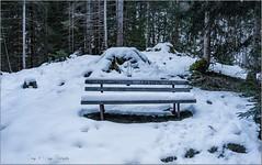 Oly_P1170697 (calpha19) Tags: imagesvoyagesphotography adobephotoshoplightroom olympusomdem1mkii zuiko m12100f4 voyage balade valléedustubaïtal stubaital neustiftimstubaital tyrol österreich autriche austria ngc geo flickrsexplore volderau neige hiver janvier 2020