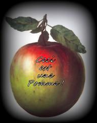Ceci n'est pas une pomme (jeanraoulb) Tags: arts artscréamagrittepeinture