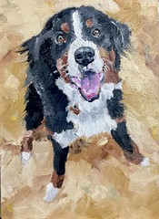 Jennings (lwdphoto) Tags: lance duffin lancewadeduffin lanceduffin oil oilpaint painting art abstract expressionistic allaprima dog pet