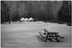 FEBRUARY 2020 _1794_NGM_4797-1-222 (Nick and Karen Munroe) Tags: bench benches park parkbench picnic table picnictable picnictables snow snowfall snowstorm snowy wintry winter winterwonderland trees tree conservationarea conservation caledon thegrange haltonhills halton northcaledon theforksofthecredit landscape landscapes karenick23 karenick karenandnickmunroe karenandnick munroe karenmunroe karen nickandkaren nickandkarenmunroe nick nickmunroe munroenick munroedesigns photography munroephotoghrpahy munroedesignsphotography nature brampton bramptonontario ontario ontariocanada outdoors canada d750 nikond750 nikon nikon2470f28 2470 2470f28 nikon2470 nikonf28 f28 blackandwhite bw blackwhite bandw monochrome mono kenwhillansconservationarea kenwhillansconservation kenwhillanspark kenwhillans