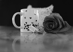 Andy Cuadra Day 45 2020 366 (Andy Cuadra) Tags: valetines day tea rose black white leaica q