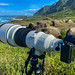 Sony 400mm f/2.8 Lens