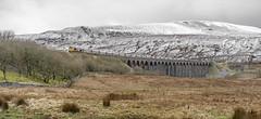 Batty Moss (Kingmoor Klickr) Tags: gordonedgar 66707 sirsamfay battymoss ribblehead viaduct sc settlecarlisle gbrailreight railfreight 6m37