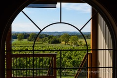 Vinyard Through the Window (kevnkc2) Tags: stdntsdoncooper lightroom newyork geneva senecalake summer winery brewery vacation lake castle nikon d610 tamron 2470mmg2 sp2470mmf28divcusdg2a032n